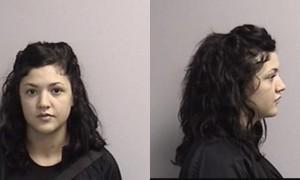 Saline County Jail Booking Activity – Monday