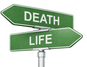 Life and Death. With One, Comes the Inevitable Other.
