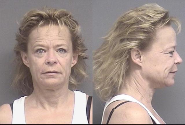 Name: Bonnville,Penny Jo   Charges: Probation Violation