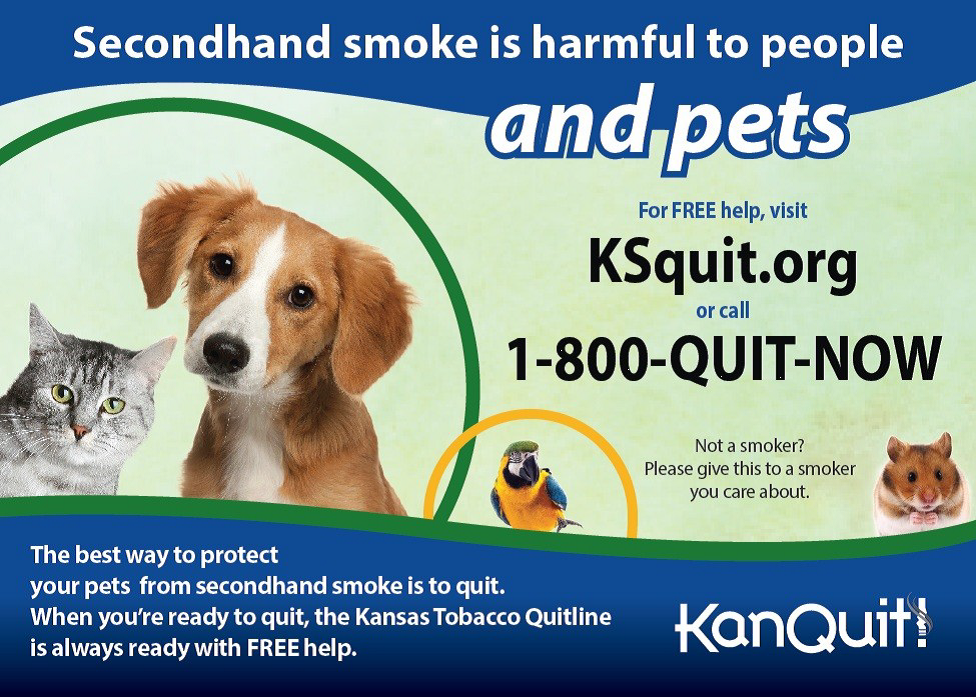 Secondhand Smoke and Pets