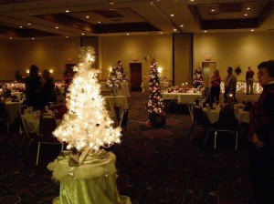 The Domestic Violence Association of Central Kansas to Host the Festival of Trees