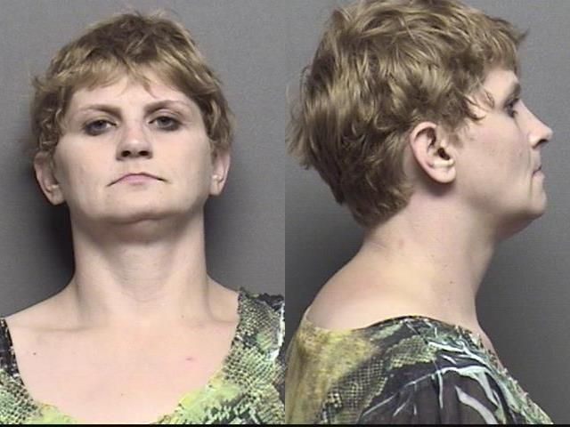 Nichols,Denise Michelle Charges Domestic battery; Knowing rude physical contact w/ family member	1000.00