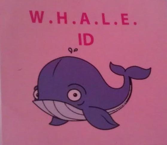 whale id edited 2