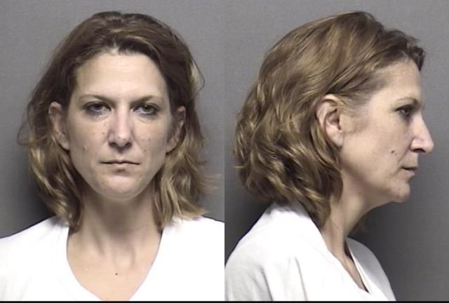 Name: Ravenstien,Tami Lynn              Charges: Failure to appear2000.00 Theft of property or services; Value less than $1,000