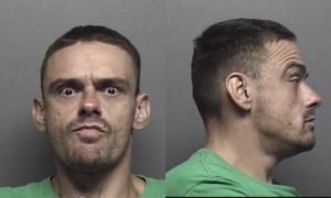 Name: Reinwald,Brian Lee         Charges: Probation Violation