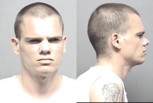 Rawline,Brian Allen Charges: Possession of hallucinogenic drug; 1 prior conviction6,000.00 Use/possess w/intent to use drug paraphernalia into human body6,000.00