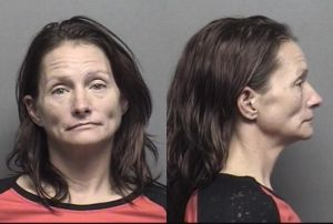 Name: Hinkle,Kimberly Susan Charges	:	  Driving While Suspended
