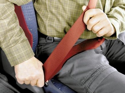 Seat belt  Seatbelt