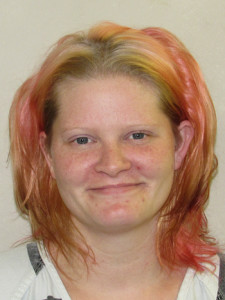 Dickinson County Jail Booking Activity, September 25 – October 1, 2015
