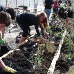 Kansas high school wins ecology award