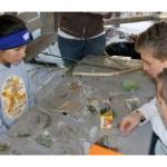 Area students win at Kansas Eco-Meet