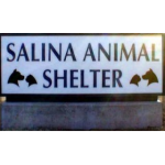 Animal Shelter Seeking Adoptions To Make Room for Incoming Animals