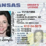 Kan. restricted driver's license app now available online