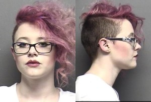 Saline County Jail Booking Activity – Wednesday, March 30, 2016