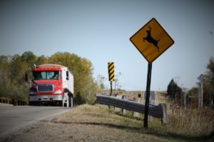 Deer-related accidents still a problem in Saline Co.