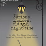 The Curious Incident of the Dog in the Night-Time postponed