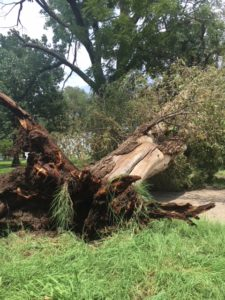 UPDATE: Brief storm brings damaging winds, heavy rain