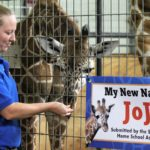 'Jojo' wins Rolling Hills Zoo naming vote