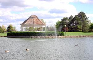 Jerry Ivey Pond Under Blue-Green Algae Watch