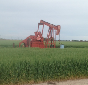 Kansas  company pleads guilty in $1M oil and gas fraud