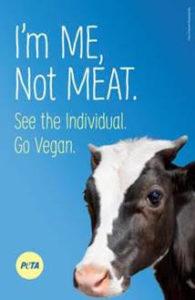 PETA plans billboard to commemorate cattle killed in rollover